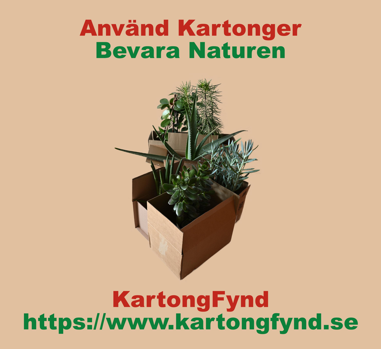 Olika kartonger fyllda med blommor tillsammans med text använd kartonger bevara naturen